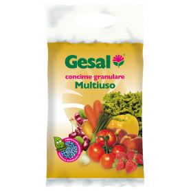 GESAL CONCIME GRANULATO MULTIUSO KG.5